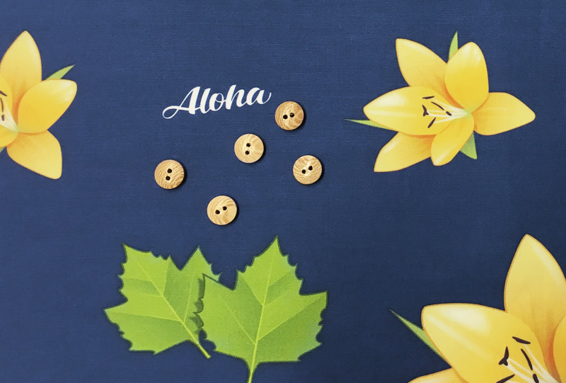 aloha-deutschland-ausblick-8