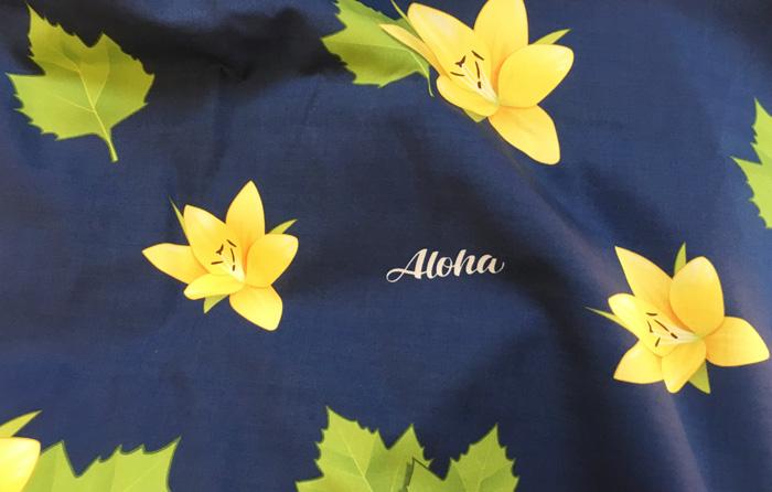 aloha-deutschland-banner-2